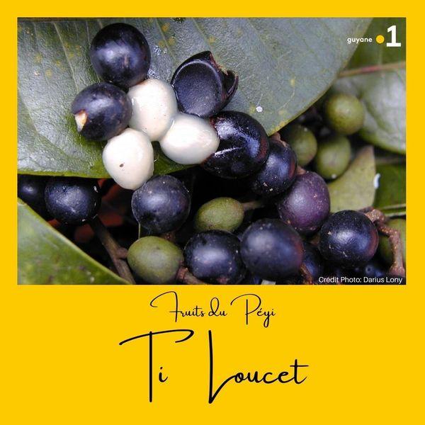 Fruits du Péyi #1