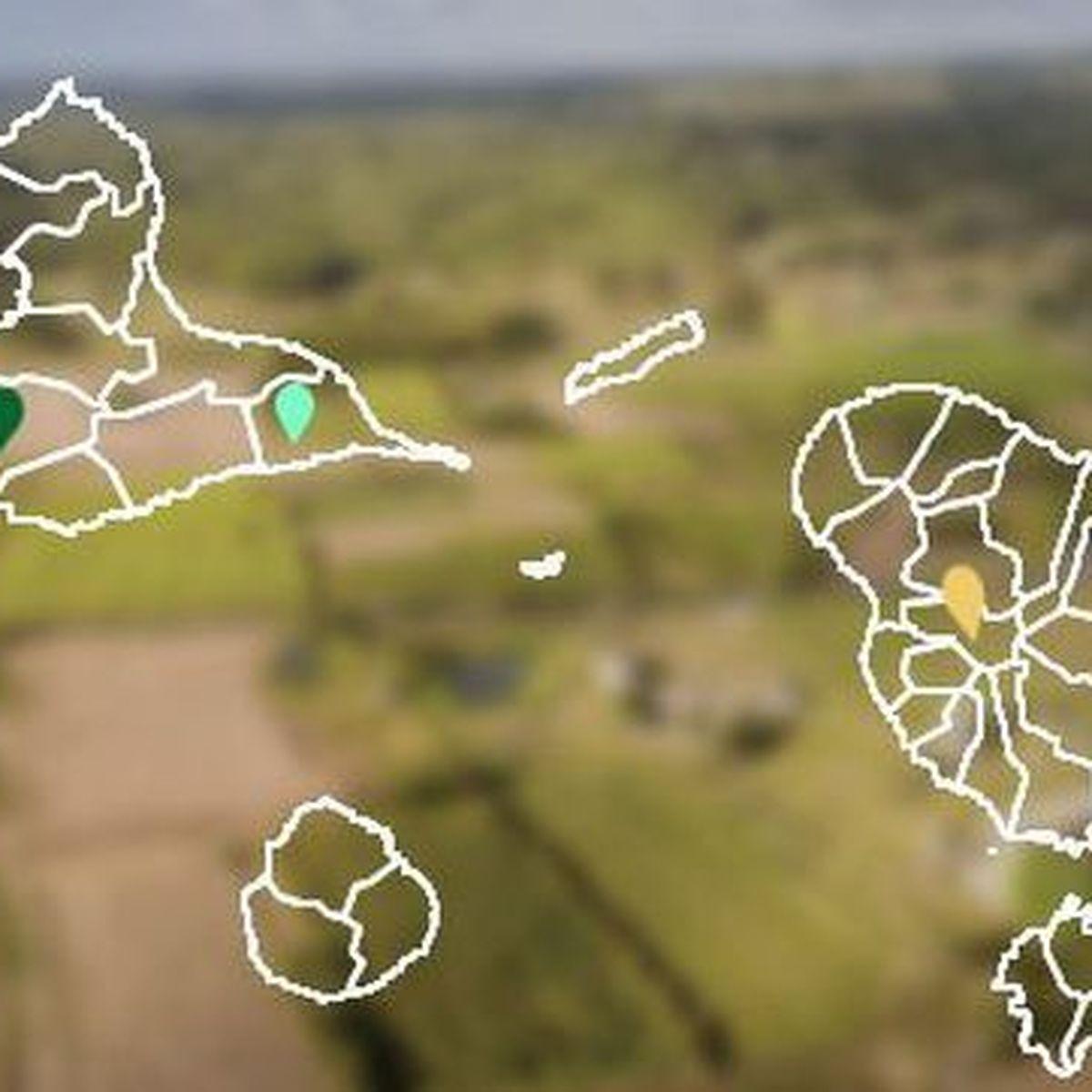 Guadeloupe et Martinique dissoutes dans le chlordécone
