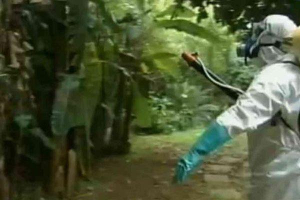 Démoustification à La Réunion en 2005 pour tenter de freiner l'épidémie de chikungunya