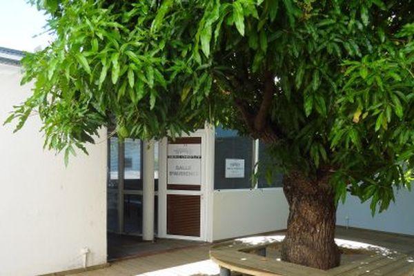Tribunal administratif de la Guadeloupe