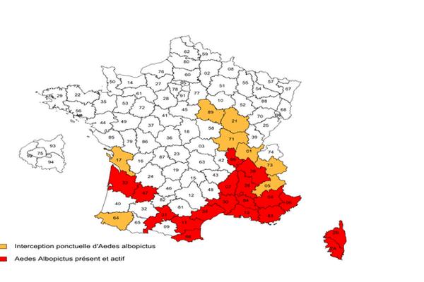 France 2014 chikungunya