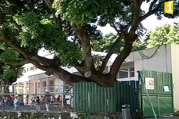 Ecole Françoise Mollard, quartier des Camélias à Saint-Denis