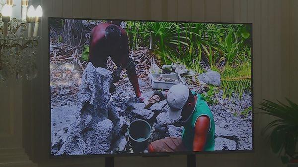 Opus archéologie Polynésie