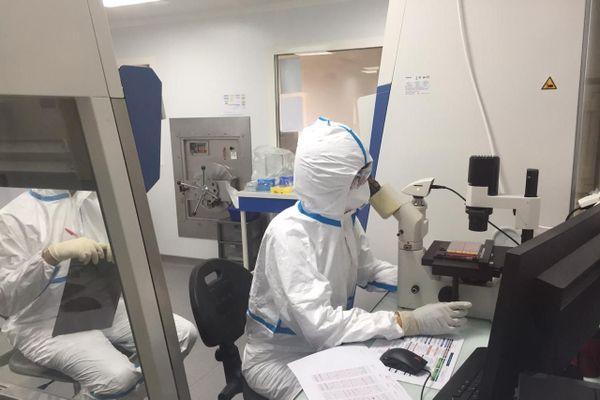 Le laboratoire de virologie de Pasteur à Cayenne collabore avec le Suriname