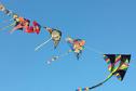Deux spécialistes chinois des cerfs-volants artistiques à Tahiti à partir du 17 septembre