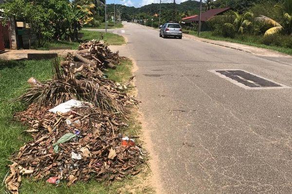 Déchets végétaux sur le bord des routes