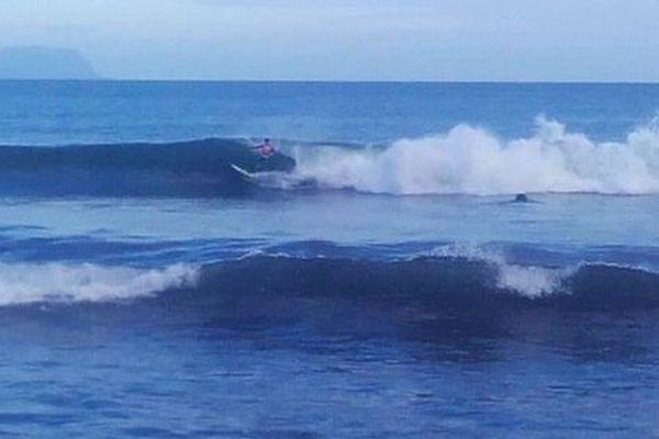 As Kaoha Nui Surf Club / surf marquises
