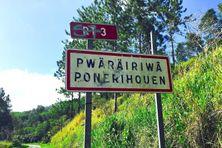 Une entrée de Ponérihouen, image d'illustration.