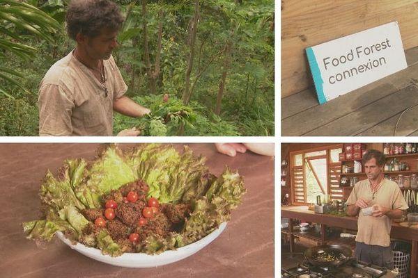 un repas du réveillon avec le collectif Food Forest