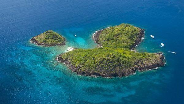 Réserve Cousteau à Bouillante en Guadeloupe