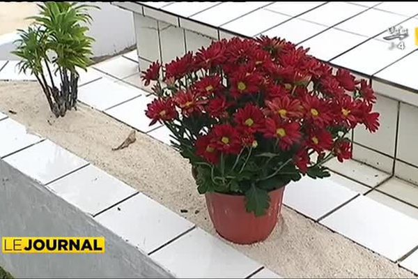 La fleur, symbole de l'amour des vivants pour leurs disparus