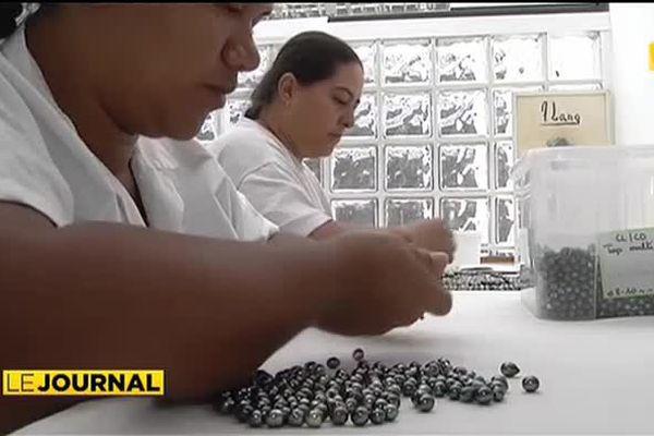 Le gouvernement veut rendre son lustre à la perle de Tahiti