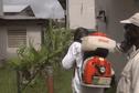 Le chikungunya progresse modérément