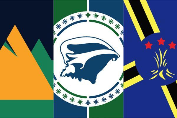 vote drapeaux Martinique