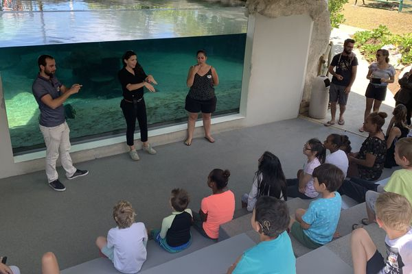 Visite Aquarium APS