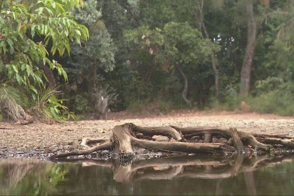 Cours d'eau presque à sec en VKP
