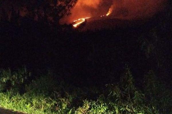 volcan piton de la fournaise le front de coulée s'approche de la route 040420