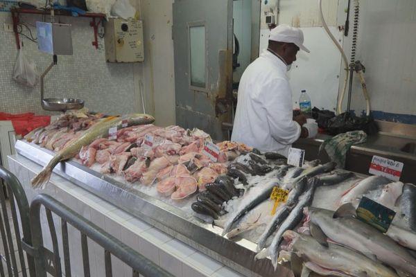 Coronavirus : le secteur de la pêche en crise