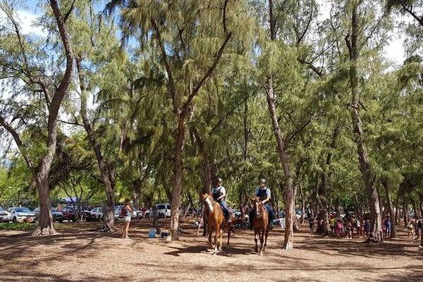 Durant les vacances scolaires, des gendarmes patrouillent à cheval sur les plages de l'Ouest.