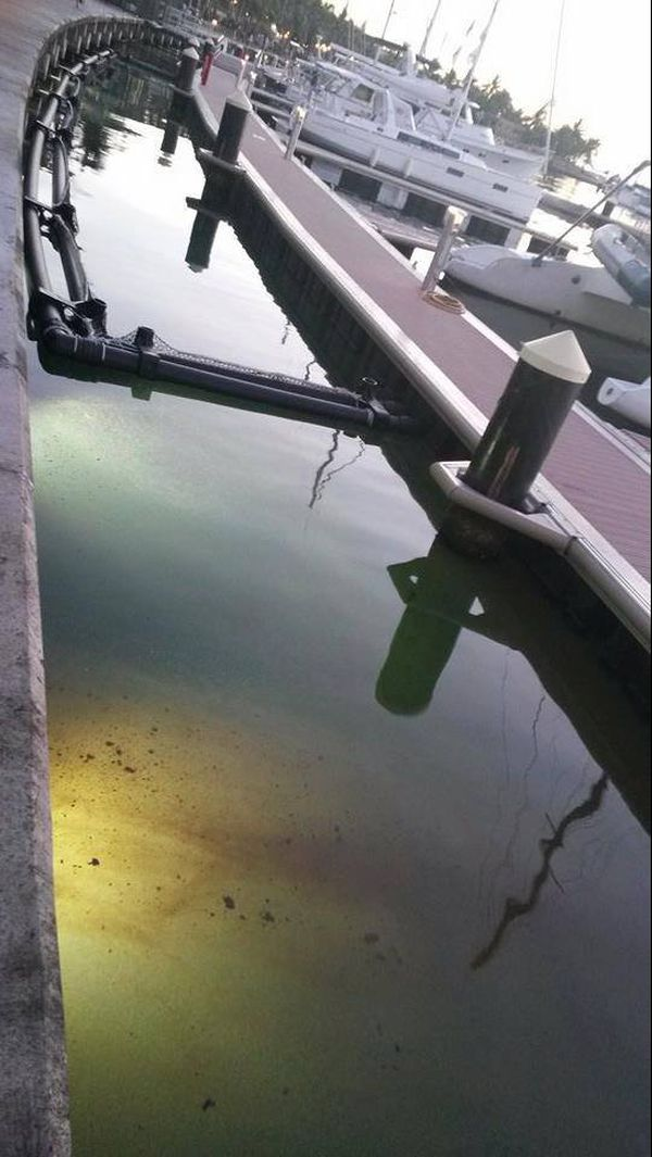 Pollution quai Papeete