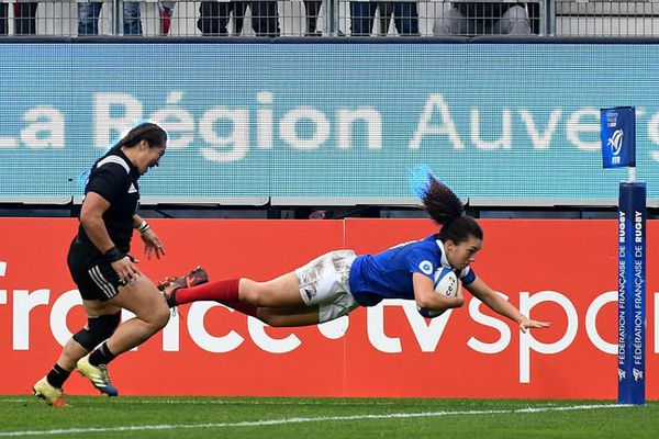bleue - équipe de france rugby