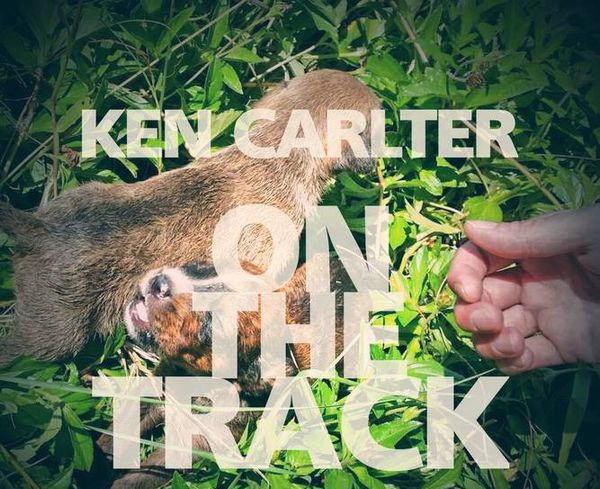 on the track couv album