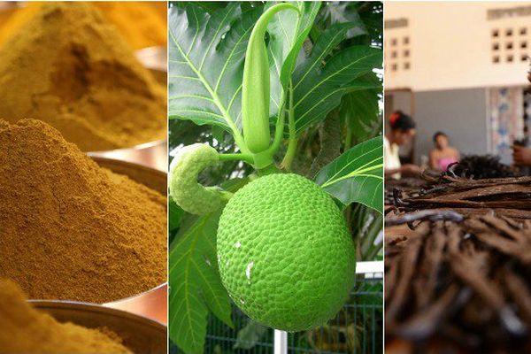Curcuma, uru, vanille : (re)découvrez les trois incontournables