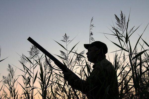 Les chasseurs se tirent dessus