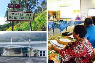 Mosaïque conseil municipal de Ponérihouen, 28 mars 2020