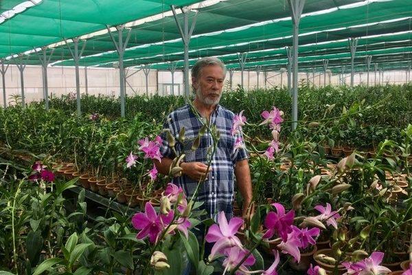 Jean-Gilles Fong, horticulteur