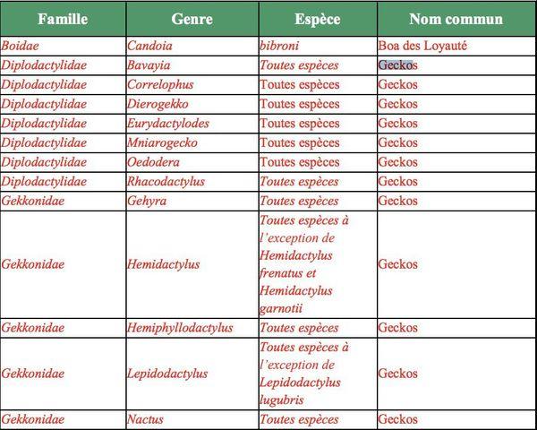 Capture du code de l'environnement de la province Sud, liste des geckos protégés