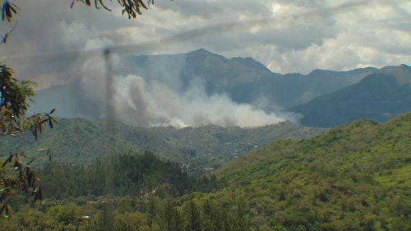 Feu de brousse Dumbéa-Païta, 1er février