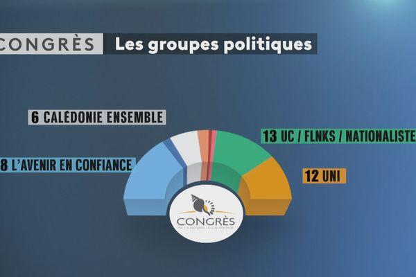 Groupes du nouveau congres