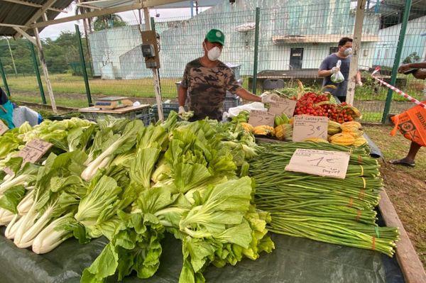 Coronavirus : la mairie de Matoury a mis en place son marché solidaire