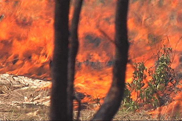 Les flammes lèchent le sol.