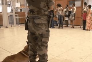 Attentats à Paris, contrôles renforcés en Guyane