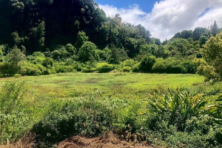 Sécheresse : des restrictions entrent en vigueur dans dix communes réunionnaises - Réunion la 1ère
