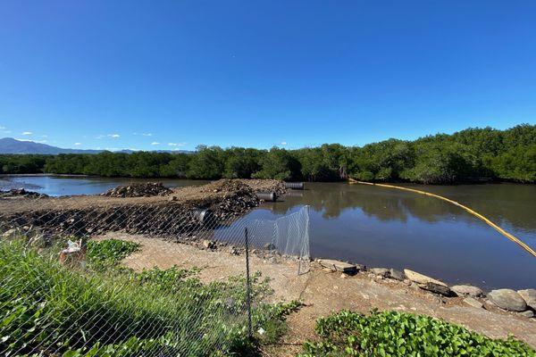 Travaux passerelle mangrove Ouémo
