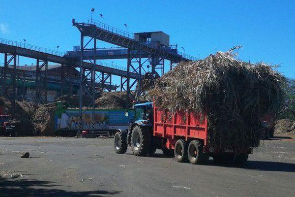Campagne sucrière reprise livraison usine Bois Rouge 160718