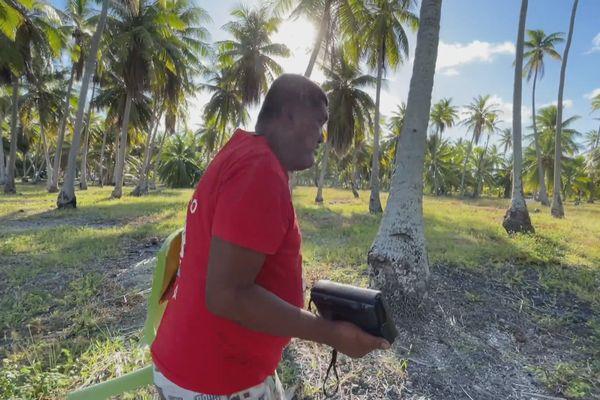 Radio aux Tuamotu
