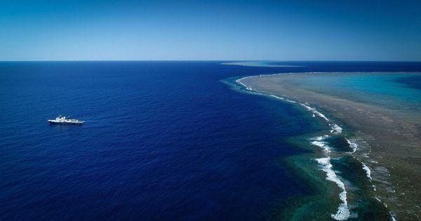 Récif Australien 1