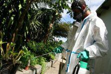 Opération de démoustication dans l'Ouest de l'île pour lutter contre l'épidémie de dengue à La Réunion.