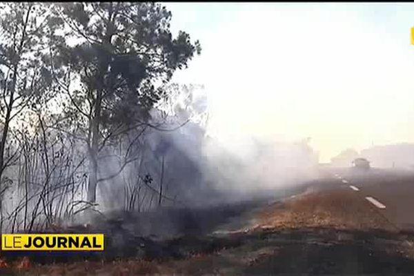 600 hectares partent en fumée en Nouvelle Calédonie