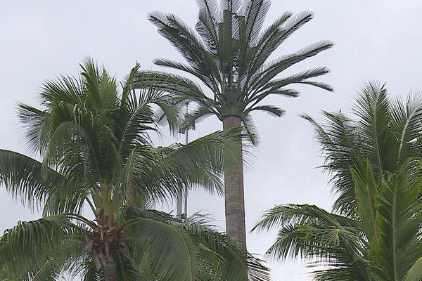 Au PK 17,5 à Punaauia, le pylône 4 G qui fait de l'ombre aux voisins