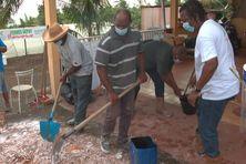 L'exemple d'une exploitation sans pesticide à Basse-Pointe.
