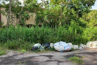Ailleurs des sacs abandonnés