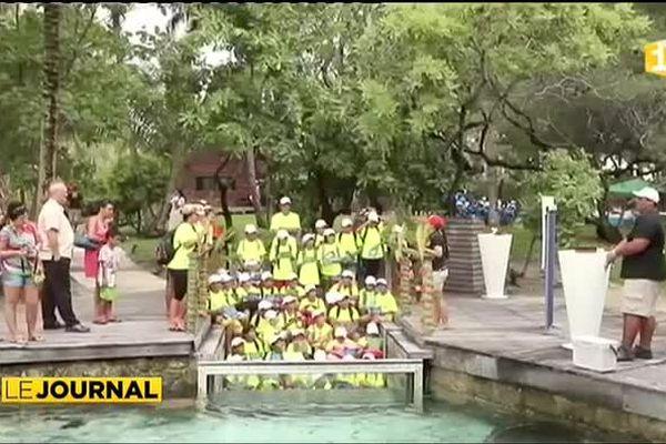 Journée de la tortue à Bora Bora