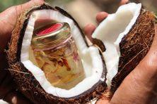 L'entreprise produit des huiles et macérats huileux à base de pulpe de noix de coco.
