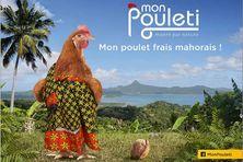 L'image par laquelle la polémique est née : une poule habillée en salouva Zéna M'déré.