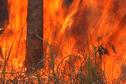 Risque incendie : 13 communes en alerte rouge